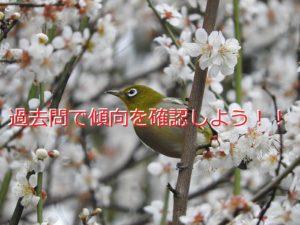 生物ブログ記事3